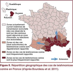 Répartition géographique des cas de leishmaniose en France